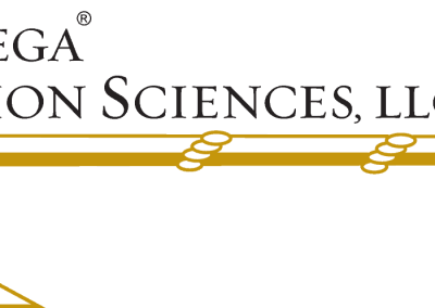 Chenega Decision Sciences LLC