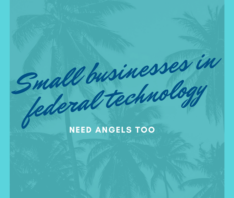 Small businesses in federal technology need angels too