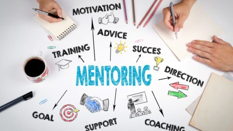 Government Mentor Protege Program