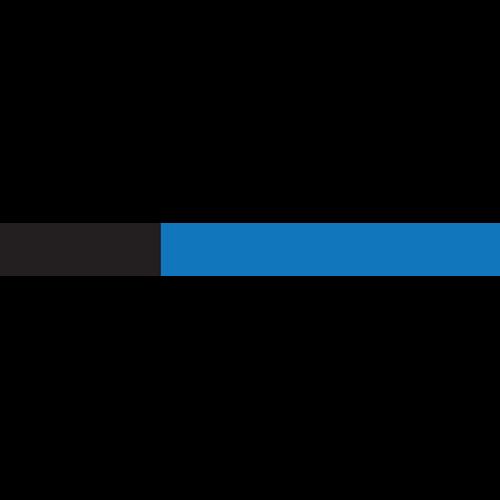 RSM Federal